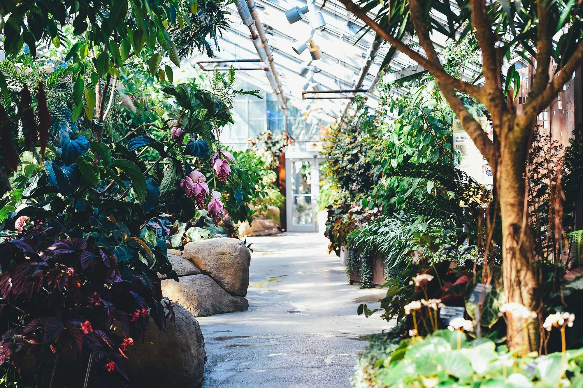 Održavanje okućnica i vrtova